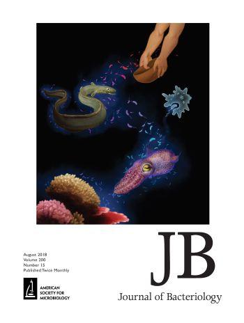 JB20018COV15